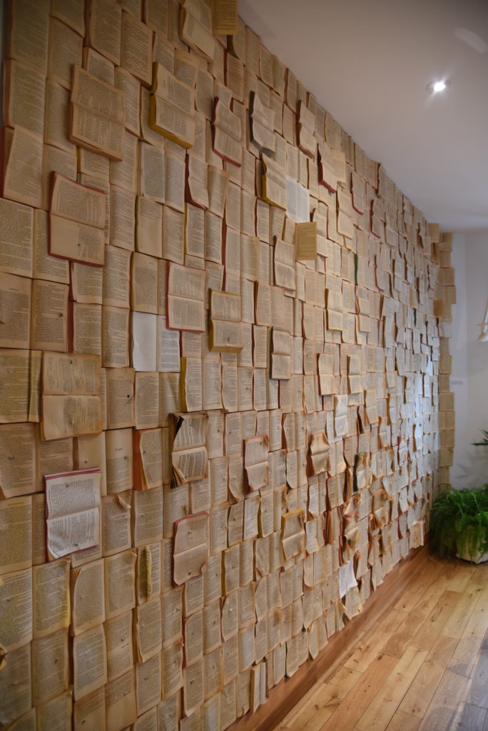 a wall full of books nailed to it