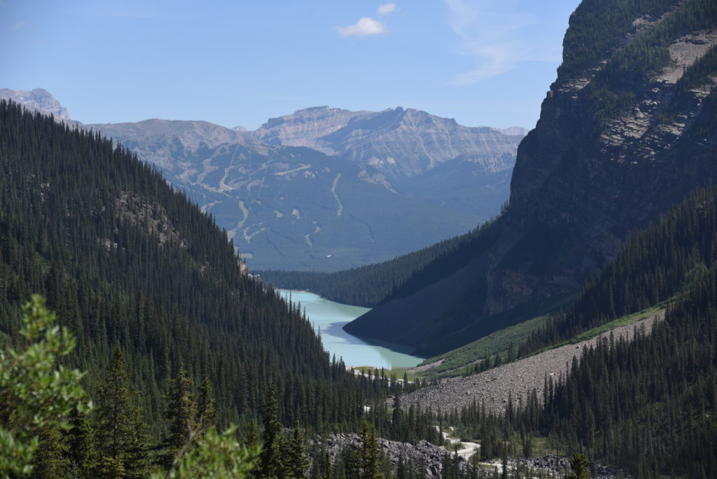 view over Lake Louise, with forest and mountains around it