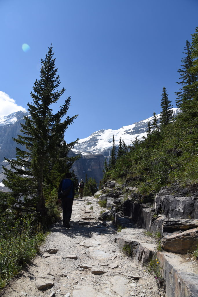 hiker on a path, trees, mountains in the background
