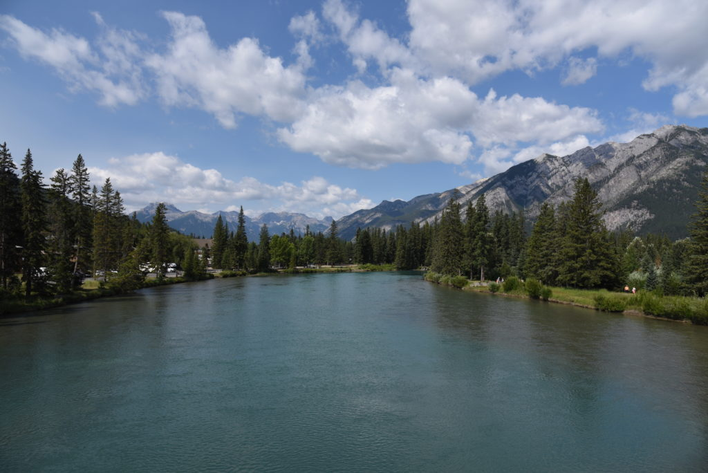 Bow River, with trees and mountains