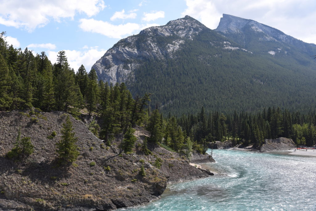 Bow River, forest and mountains
