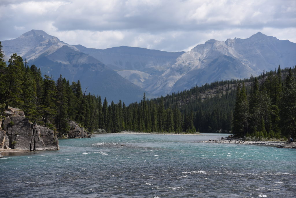 Bow River, forest, mountains in the background