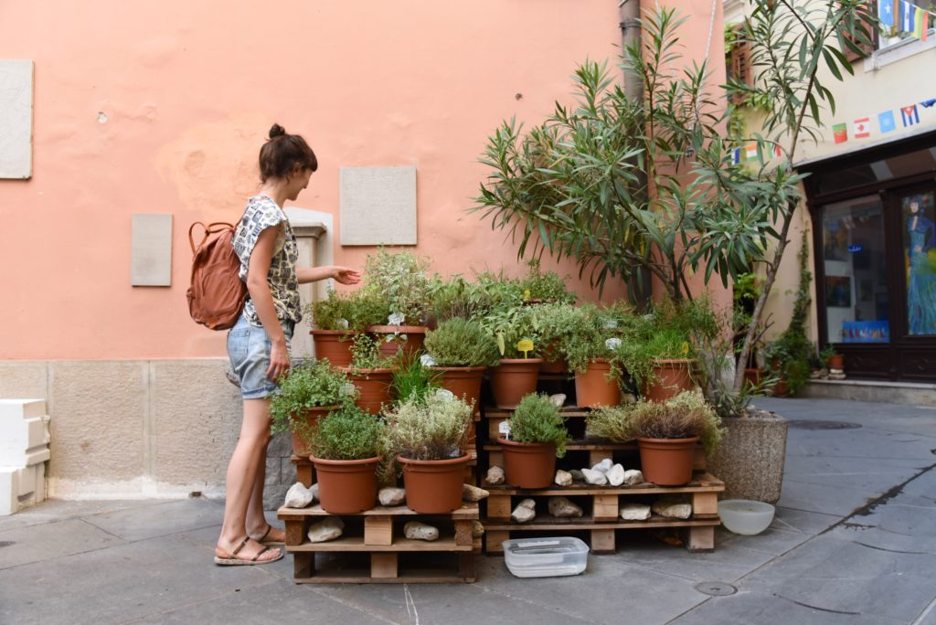 woman and plants