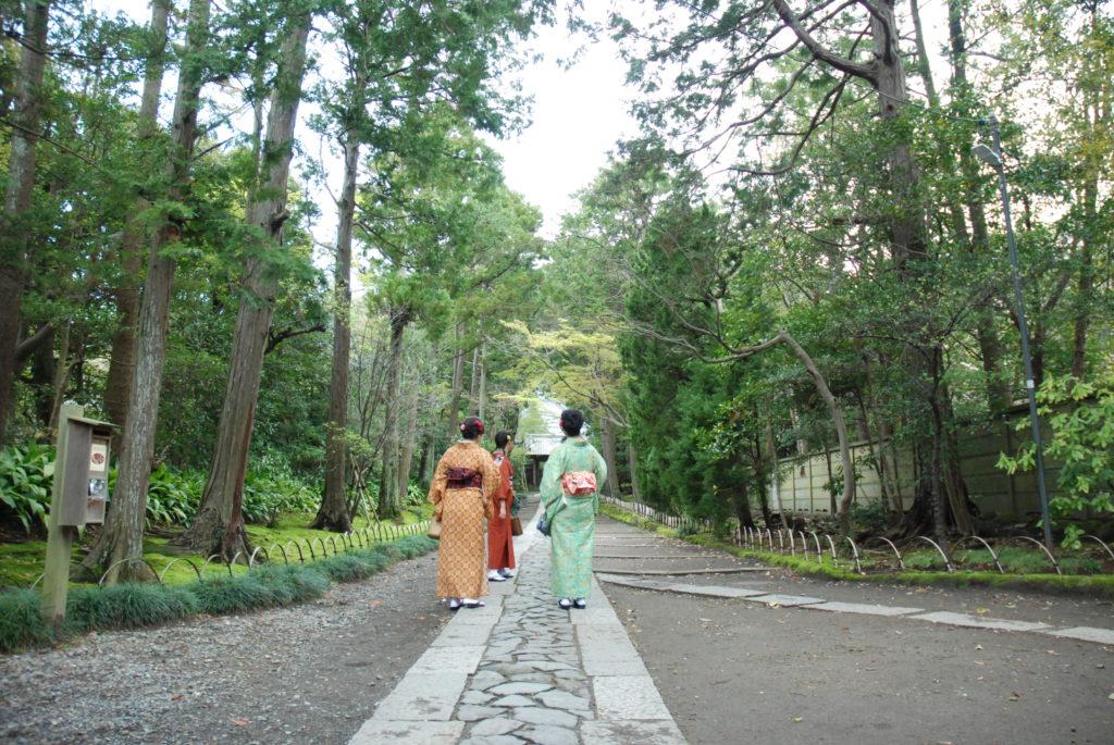 women in kimonos