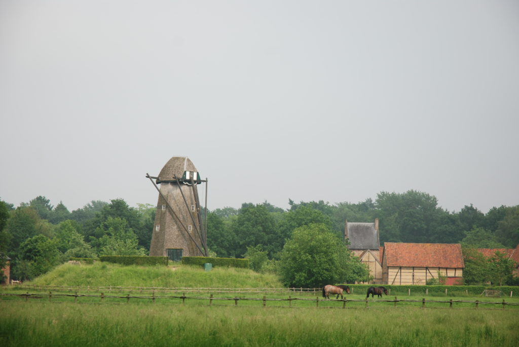 pasture with horses, forest, old windmill